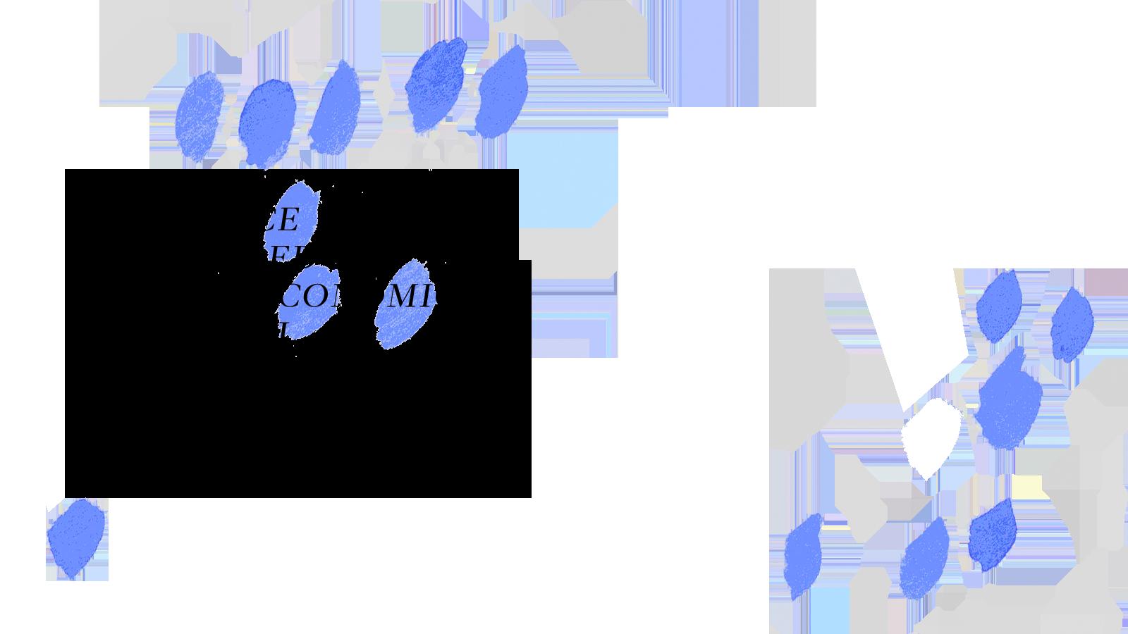 blu05