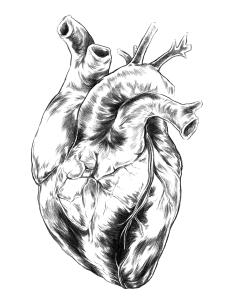 pollen_heart